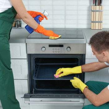 professional appliance cleaning